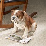 Bulldog Dog Statue