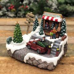 Christmas Tree Shop Display