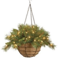 LED Fir Basket