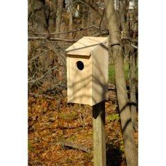 Screech Owl Bird House