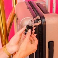 Travel Biometric Padlock