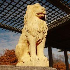 Lion Guard Fiber Stone Statue