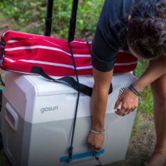 Iceless Portable Electric Cooler