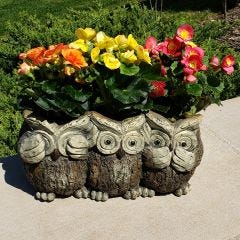 See, Hear, Speak No Evil Wooden Owl Planter