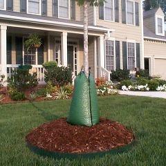 Deciduous Drip Tree Irrigation System