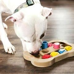 Interactive Pet Toy
