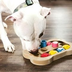 Interactive Pet Toys (Set of 3)