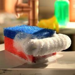 American Sponge Brush (Set of 2)