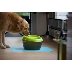 Healthy Dog Water Fountain Bowl